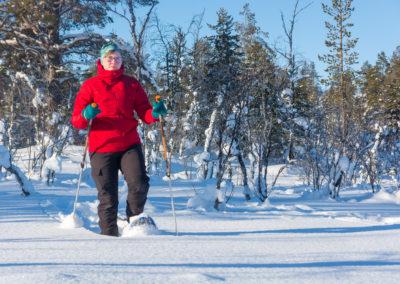 Snow shoe routes
